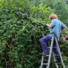 Blessures en ongelukken in de tuin voorkomen