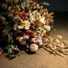 Droogbloemen - Bloemen drogen, tips
