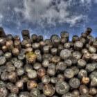 Het buigen van hout
