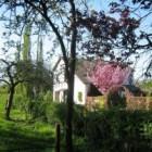 Een sfeervol huis verkopen lukt beter dan een onbewoond huis