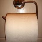 Douchetoilet maakt toiletpapier overbodig