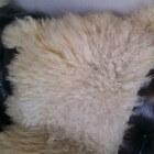 Diervriendelijke kleden van schapenvacht