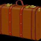 Samsonite koffers zijn sterk en goed te herkennen
