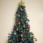 Goedkope kerstboom kopen, welke kiezen?