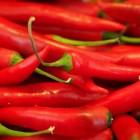 Tuinieren; tips en trucs voor het telen van peper
