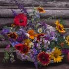 De mooiste bloemen pluktuinen van Nederland op een rij