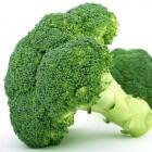 Je eigen moestuin: Broccoli