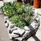 Guerrilla gardening: groen door de hele stad