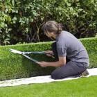 Hoveniers voor tuinontwerpen, aanleg en onderhoud