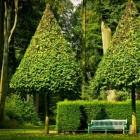 Tuinarchitectuur: deelplannen en ontwerp