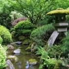 Tuinsoorten: Wat voor tuinsoorten bestaan er onder andere?