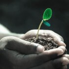 Bodemtest of bodemanalyse voor in de tuin