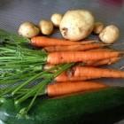 Je eigen groentetuin als bijverdienste