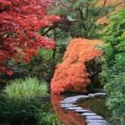 Welke tuin past bij je en hoe leg je deze aan?