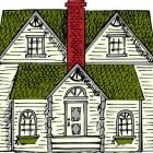 Groene daken; beplanting op het dak