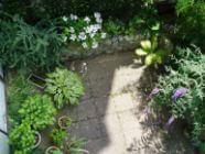 Tuinieren op balkon of terras in de lente