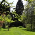 Garden Groom, heggenschaar met mogelijkheden