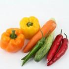 De groententuin: keuzes en materialen