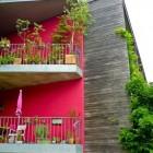Tuinieren op een balkon; mogelijkheden genoeg!