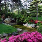 Doe inspiratie op in de mooiste open tuinen van Nederland