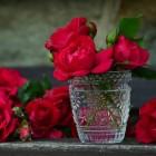 Snijbloemen uit eigen tuin langer bewaren in de vaas