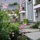 Een cottagetuin / landelijke tuin