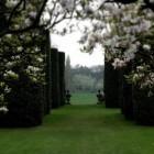 De klassieke formele tuin en de georganiseerde tuin