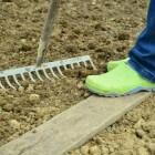 Zaaien of planten bij langdurige droogte