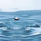 Waterfilter: kopen en aanleggen vijverfilter voor de vijver