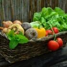 Biologisch/ecologisch tuinieren is leuk en gezond!