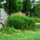 Feng Shui in de tuin