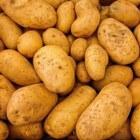 Aardappels kweken in 10 stappen