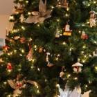 Verkoop kerstbomen bij IKEA: een actie voor Natuurmonumenten