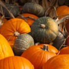 Halloween feest en party ideetjes
