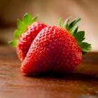 Het kweken van aardbeien