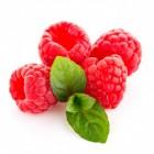 Een snoeptuin vol vitaminen: makkelijk zelf aan te leggen!
