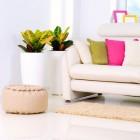 Fleur je huiskamer op voor het najaar