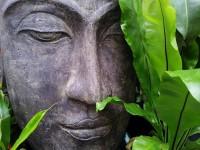 Zen Tuin Aanleggen : Zelf een zen tuin aanleggen huis en tuin: tuin