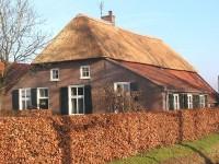 Dakbedekking: het rieten dak huis en tuin: producten