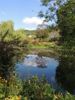 De watertuin van Claude Monet in Giverny / Bron: Agerezs, Pixabay