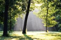 Wateroverlast Tuin Kleigrond : Wateroverlast en tuinieren op natte of vochtige grond huis en tuin